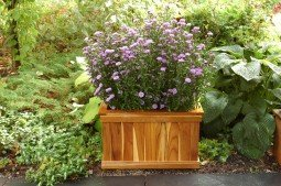 Teak furniture Planters